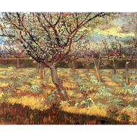 Handmade oil painting reproduction of Vincent Van Gogh High quality Apricot Trees in Blossom Living room decor
