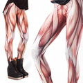 2016 3D Muscle Women Legging Womens Leggings Jeggings Legings Sexy Legging Pants Legins Sexy Printed Leggings DDK030209