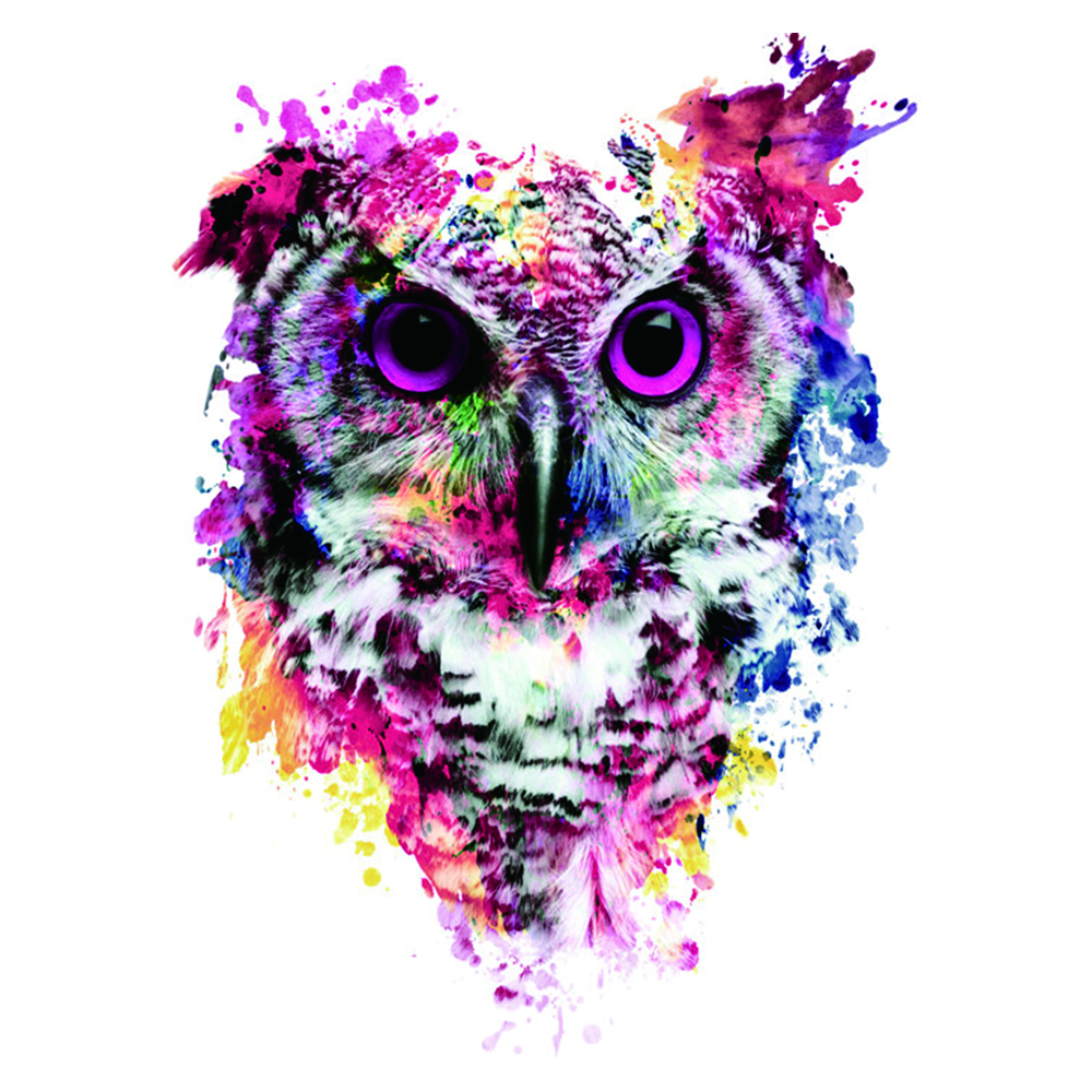 SHUOSI full needlework diy diamond painting owl drawing square drill fashion Particles home decoration animal free shipping