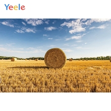 Yeele Vinyl Autumn Harvest Wheat Fields Haystack Scenenry Photography Background Customized Photocall Backdrop For Photo Studio