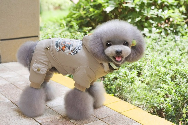 New Thickness Hooded Driver Style Pet Dogs Four Legs Cotton Winter Coat  Free Shiping By CPAM Warm Small Puppy Dogs Clothing 5