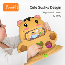 Tumama Shape Toys 23.3x23.5cm Gophers Montessori For Children Educational ABS Sensory With Story Card Unisex Baby