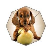 Cute Puppy Dog Custom Umbrella Fashion Design Umbrella For Man And Women High Quality Free Shipping