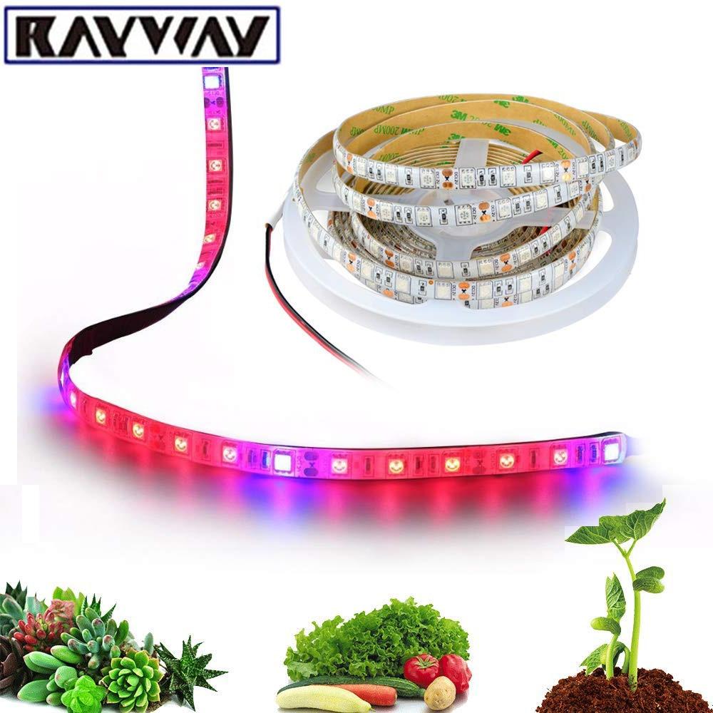 5m-dc12v-ledphytolamp-full-spectrum-led-strip-light-5050-chip-led-fitolampy-grow-light-for-greenhouse-hydroponic-plant-seeding