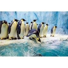 diamond painting penguin,3d ,diamand  complet