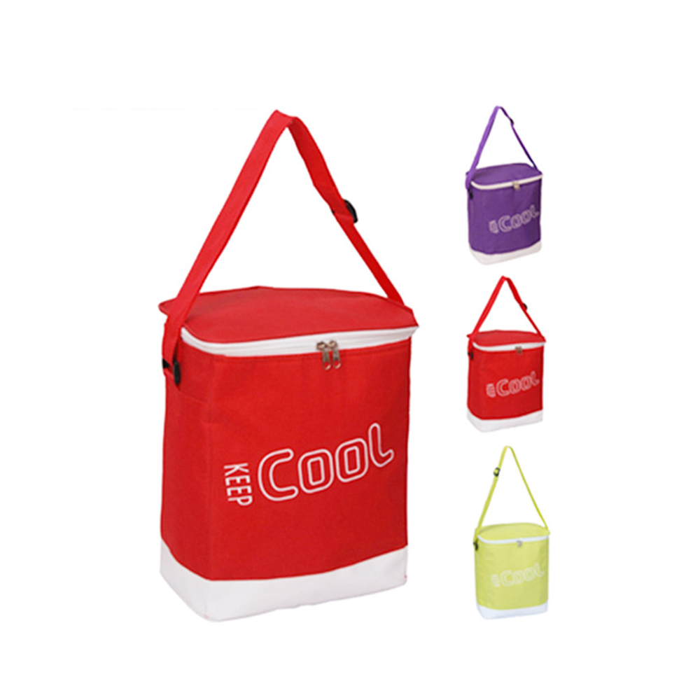 MBM Foldable Camping Bag Lunch Cooler Picnic Bag Fresh Fruits