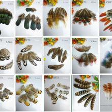 30af37946b Buy feather bird and get free shipping on AliExpress.com