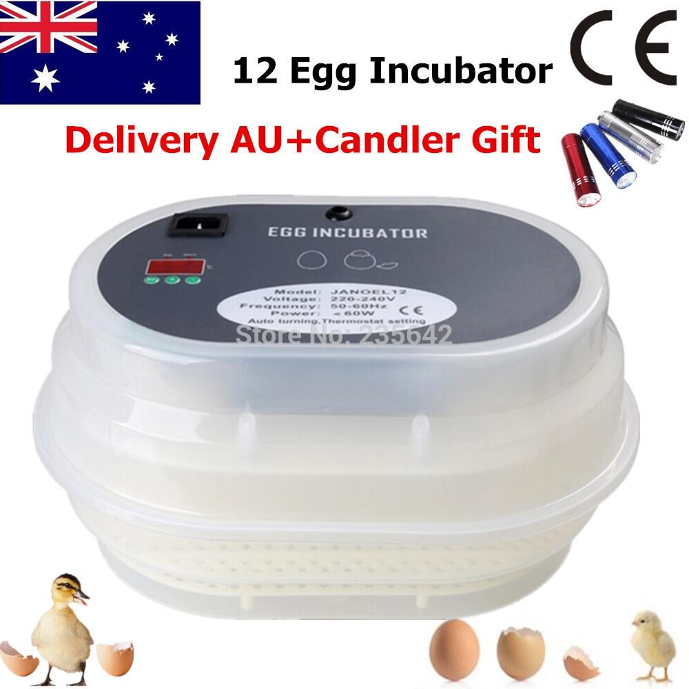 Newest Digital FUll Automatic Chicken Durk Quail Goose Incubator 12 Eggs Incubator full automatic chicken duck goose quail eggs incubator
