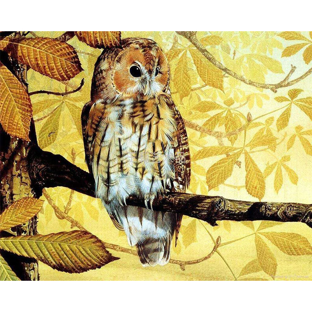 Frameless Vintage Owl Animals DIY Painting By Numbers Kits ...