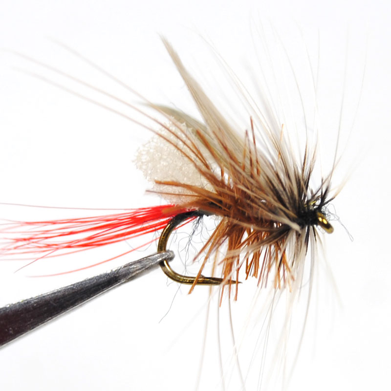 10PCS 14# Wifreo Foam Trout Fishing Dry Fly Mayfly Caddis 10pcs beadhead pm caddis 14 nymphs dry fly fishing trout flies