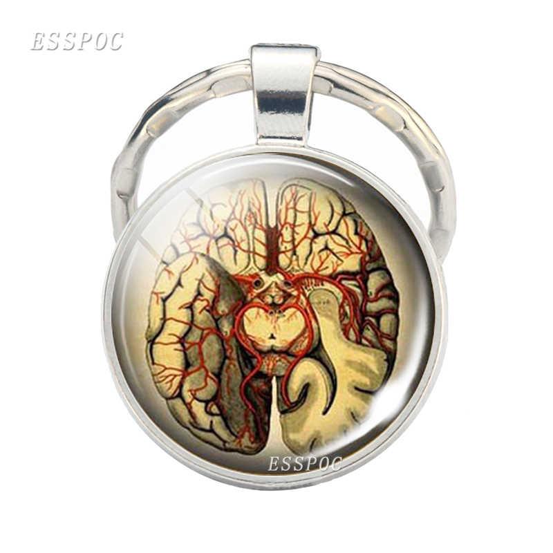 Escudo do cérebro chaveiro jóias cérebro médico imagem de vidro cabochão chaveiro presente para médicos e enfermeiros estudantes médicos