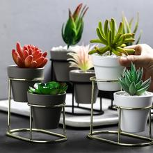 Nordic Wrought Iron Fleshy Flower Pot Gold-plated Ins Simple Frame Ceramic Green Plant Clay Set