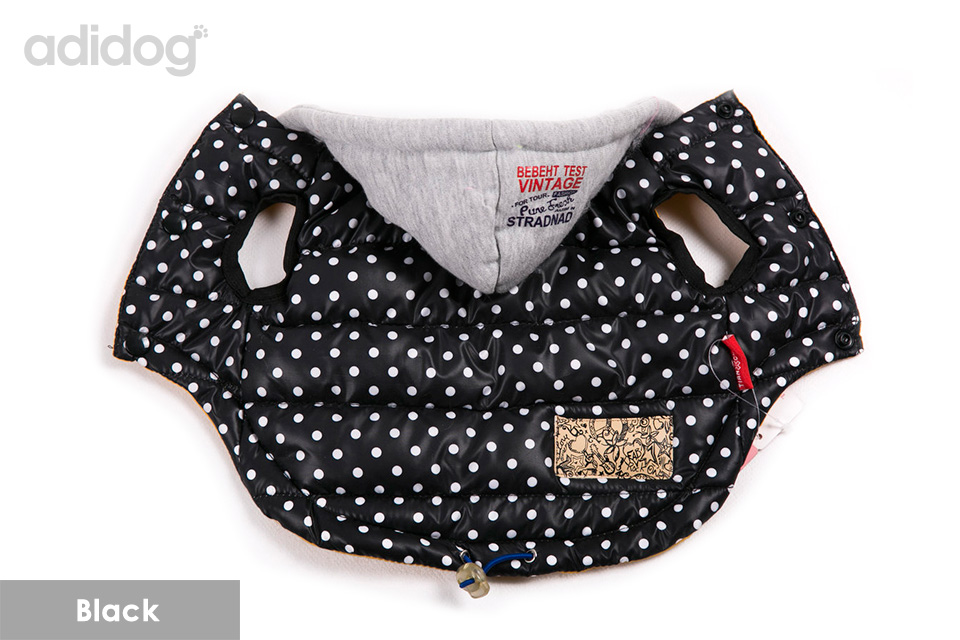 dog clothes 6