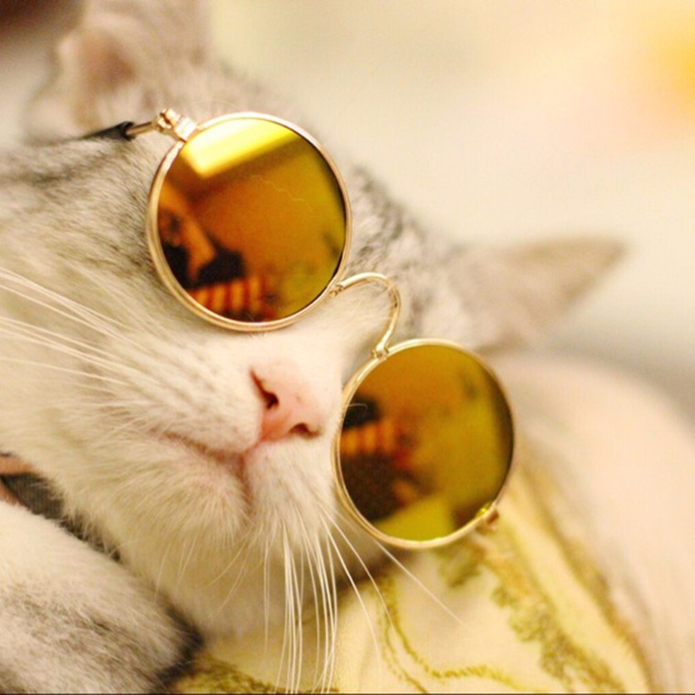 Fashionable Design Small Pet Dogs Cats Eyewear Sunglasses Universal Eye Protective Summer Pet Photos Props Minimalist Style