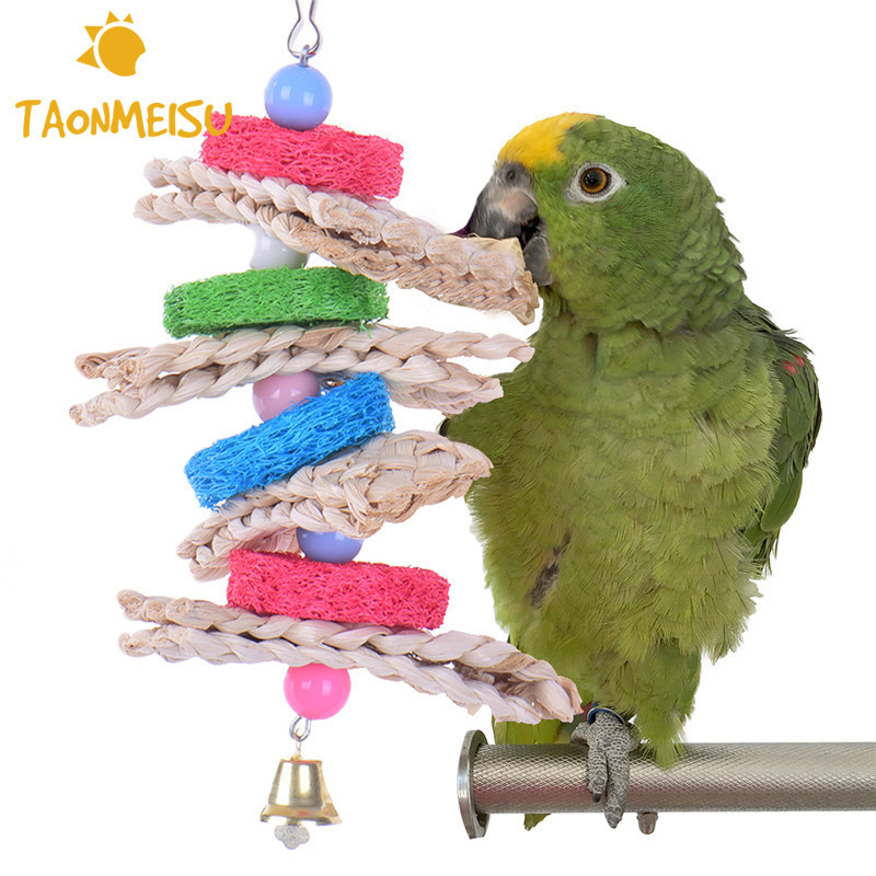 Analytical Parrot Bird Toys Natural Wood Acrylic Non-toxic Chew Toy Chewing Hanging Rope Swing Funny Toys With Chains Pet Bird Accessorie Bird Toys