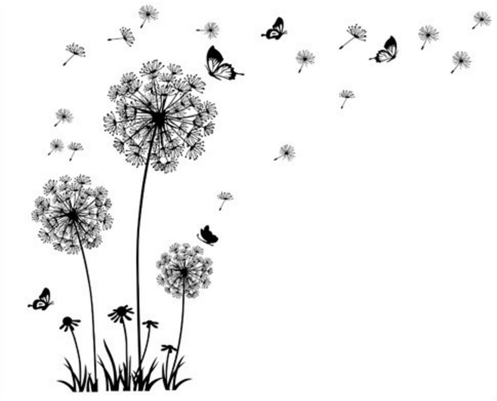 Dandelion Flower Wall Sticker Vinyl Decal Art Decal UK Genuine Broomsticker Art
