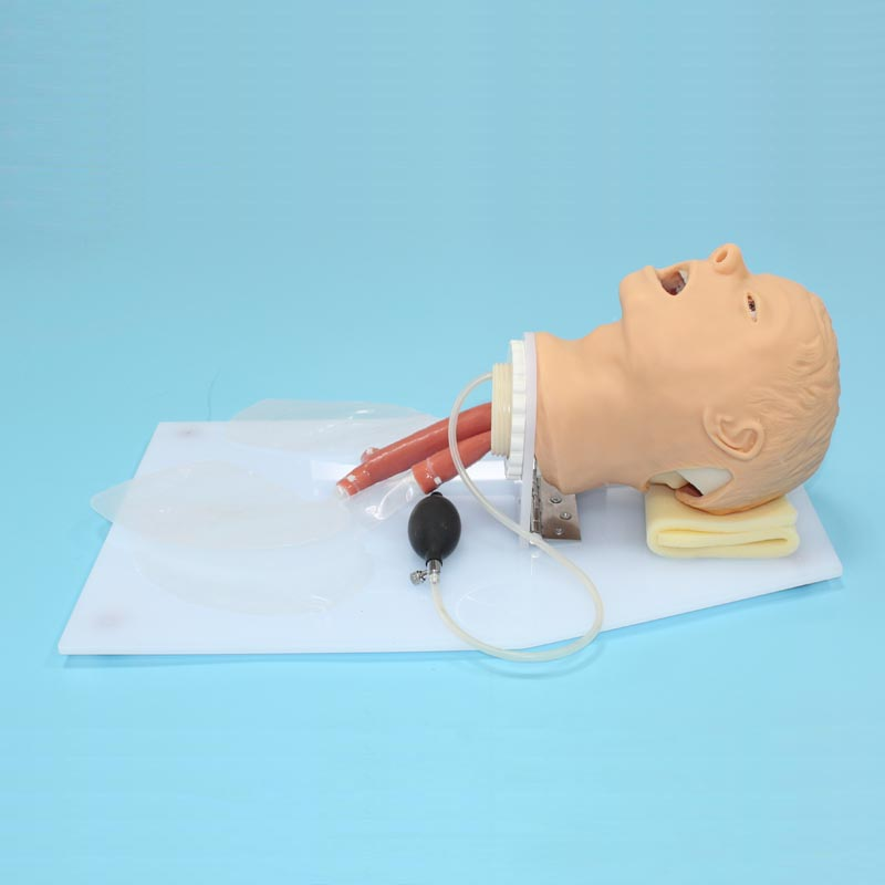 BIX-J50 Airway Training Medical Model Trachea Intubation Training Model W098 bix lv10 medical education training