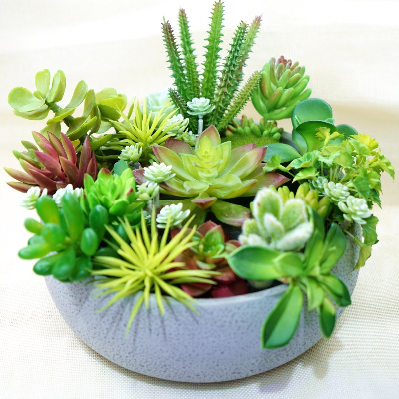 Brand new Realistic Fake Succulents Green Plastic Home Garden Faux  RC76