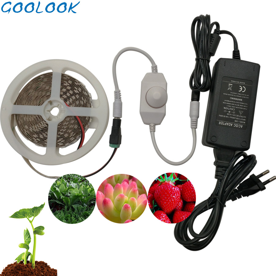 Plant Grow Lights Full Spectrum LED Strip Flower Phyto Lamp 2M 3M 5M Waterproof Red Blue 3:1 4:1 5:1 For Greenhouse Hydroponic