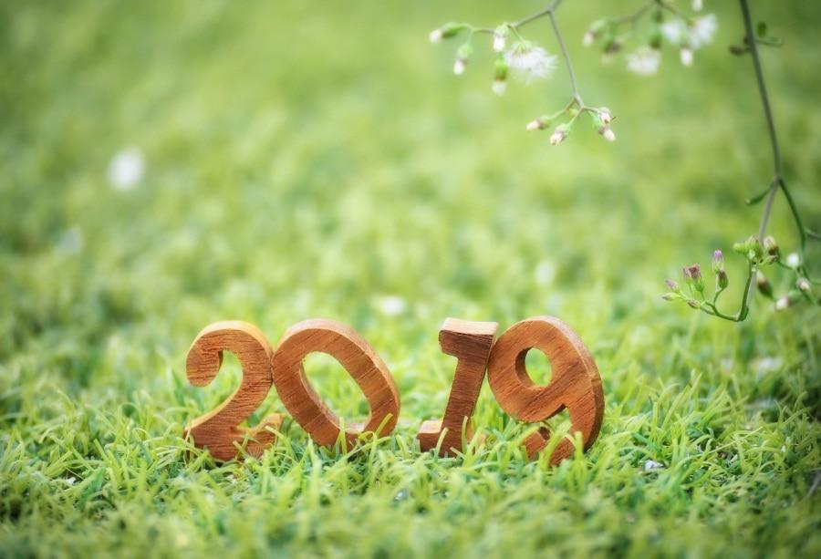 Laeacco Wooden Number 2019 Bokeh Light Grass Fondos de fotografía - Cámara y foto
