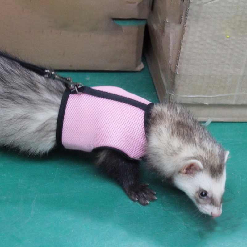 Hot Thỏ Hamster Vest Khai Thác Với Dây Xích Bunny Lưới Ngực Dây Đeo Harnesses Ferret Guinea Vật Nuôi Lợn Động Vật Nhỏ Phụ Kiện