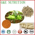 500 mg * 200 pcs/bag Extrato de Tribulus Terrestris cápsulas Oem