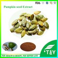 10:1 Pumpkin Seed Extract Capsule with free shipping 100pcs/bag
