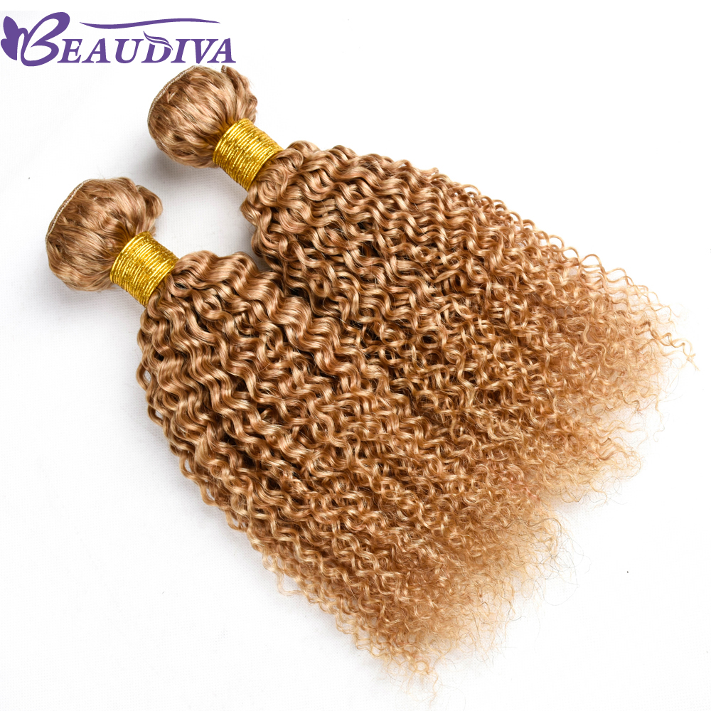 BEAUDIVA Hair Malaysian Body Wave Hair Weave Bundles 100% Human Hair Extensions 2 pc Non Remy Hair Bundles 27# Color 10-26