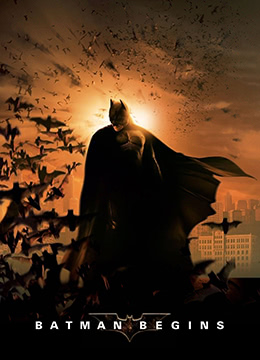 《蝙蝠侠:侠影之谜》2005年美国,英国剧情,动作,科幻电影在线观看