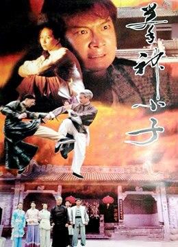 《拳神小子》2000年中国大陆剧情,动作电影在线观看