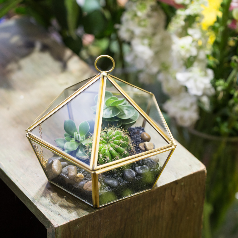 Купить с кэшбэком NCYP Modern Artistic Glass Flower Pot Brass Clear Jewel-boxed Shape Glass Geometric Terrarium Succulent Planter Seedling Box