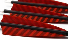 Longbowmaker 12PCS Red Streak Tukey Feather Arrows For Longbow With Carbon Shaft CRST9