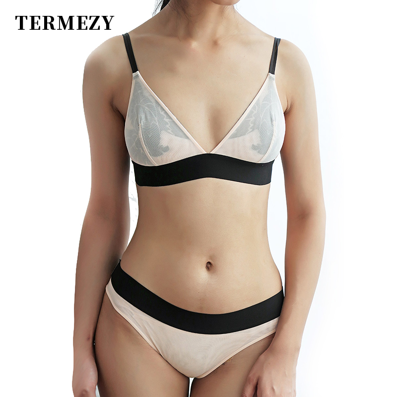 TERMEZY Women Lace Sexy Underwear Embroidery Lingerie Set Thin Transparent Ultra-thin Temptation Push Up Bra And Briefs Set