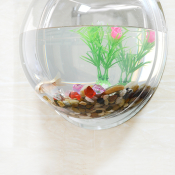 5 Sizes Creative Clear Wall Mounted Hanging Acrylic Fish Bowl Aquarium Tank Plant Vase Aquatic Pet Supplies Home Decoration 1