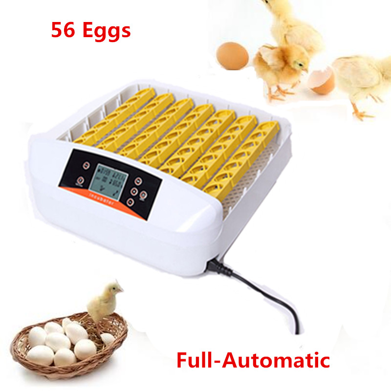 Mini home use electric incubator Auto eggs-turning  hatching machine best price quail egg incubator best price mgehr1212 2 slot cutter external grooving tool holder turning tool no insert hot sale brand new