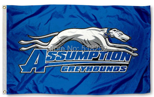 Assumption College Greyhounds Flag Polyester 150X90CM NCAA 3x5FT Banner 100D Custom flag grommets 6038,free shipping
