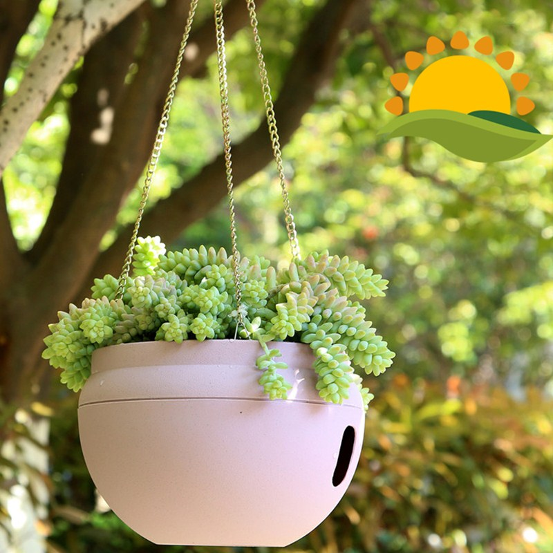 comprar colgar macetas de pared olla vertical jardn macetas y jardineras decorativas macetas grow bag planter suculentas de interior al
