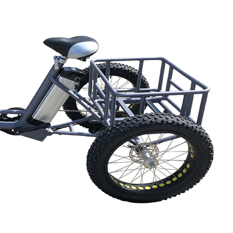 electric bicycle (4)