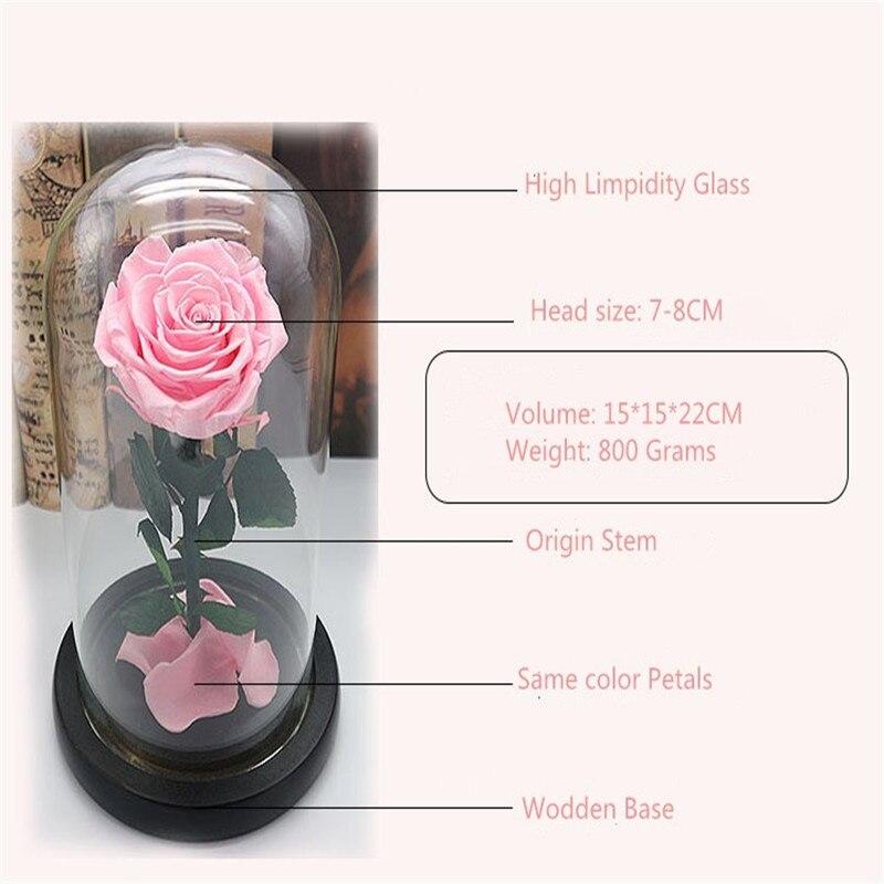 Forever Fresh Rose Flower Festive Mom Preserved Immortal in Glass Gift TOP