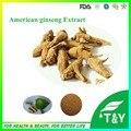 100g Factory supply American ginseng /  Panax quinquefolium / Radix Panacis Quinquefolii Extract with free shipping