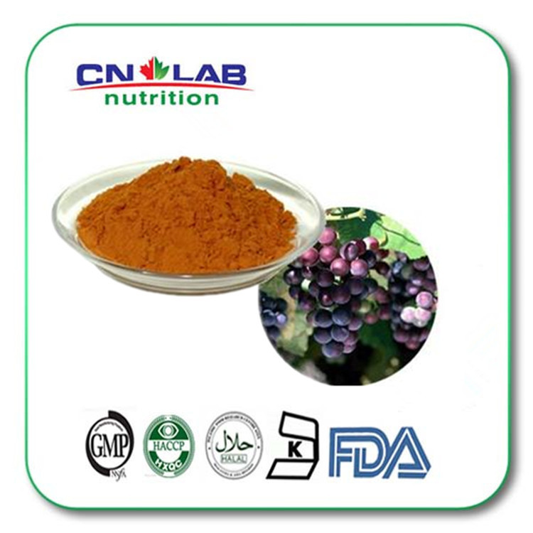 100% Water Soluble Grape Seed 500gram/bag Grape seed extract , grape seed extract powder 95% OPC with best price 100% pure fenugreek seed extract methi extract