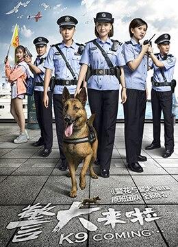 《警犬来啦》2018年中国大陆剧情电视剧在线观看