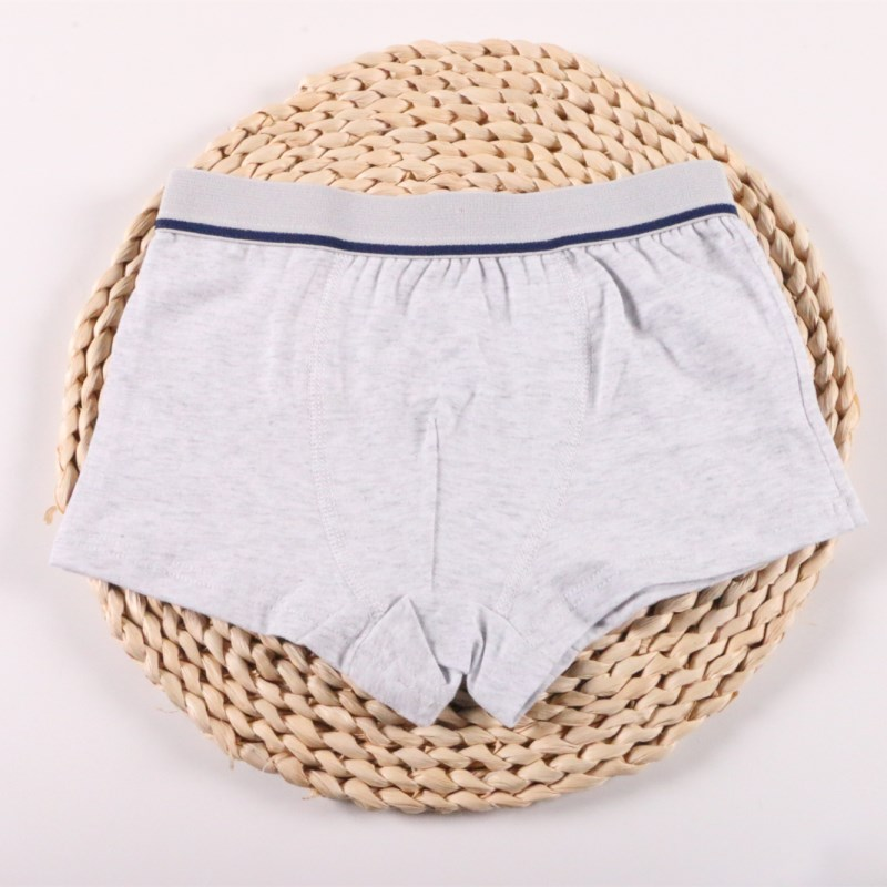 2Pcs/Lot Boys Underwear Pure Color Kids Shorts Panties Cotton Baby Children Boxer for Teenager Underpants 2-10Y 3