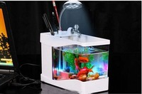 White Home And Office Gift 3 In 1 Mini Fish Tank Usb Aquarium Manufacture