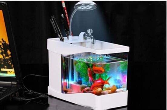 La maison et le bureau cadeau 3 en 1 mini fish tank usb aquarium