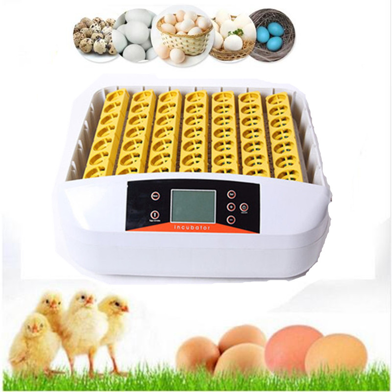 56 Eggs  Incubator Machine Automatic Turning eggs commercial egg incubator for sale small digital display quail egg incubator top sale household farm egg incubators 24 egg incubators for led display turner for sale