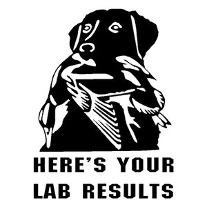 11.1CM*14.6CM Lab Duck Hunt Do