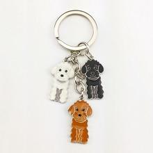 Poodle Teddy dog key chains for women men white gold color alloy metal pet animal pendant bag charm car keychain key ring holder