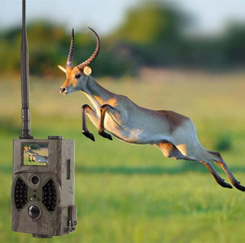 Wild Angle Wild Camera Traps for Hunting Trail Cameras MMS Digital Hunting Camera Gsm mms gps hunter cam surveillance