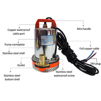 DC 12V Submersible Pump Water Deep Stainless Steel Well Alternative Energy Solar Powered Submersible Pump